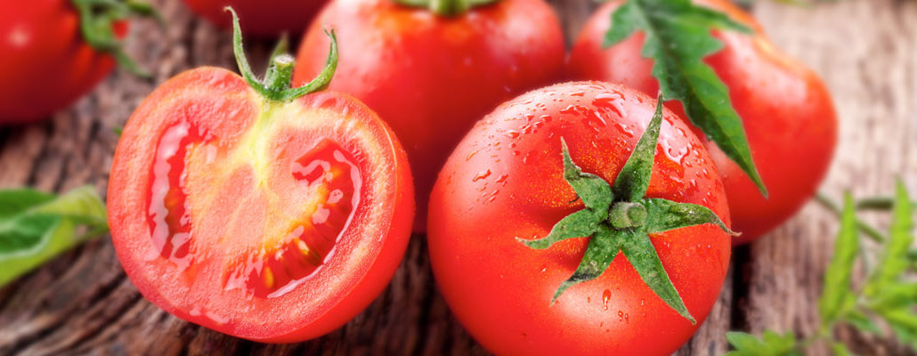 wholesale tomato products