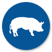 Wholesale Pork, Pork Wholesale, Wholesale Pork