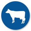 wholesale beef distributor
