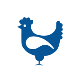 wholesale chicken products
