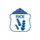 wholesale organic rice