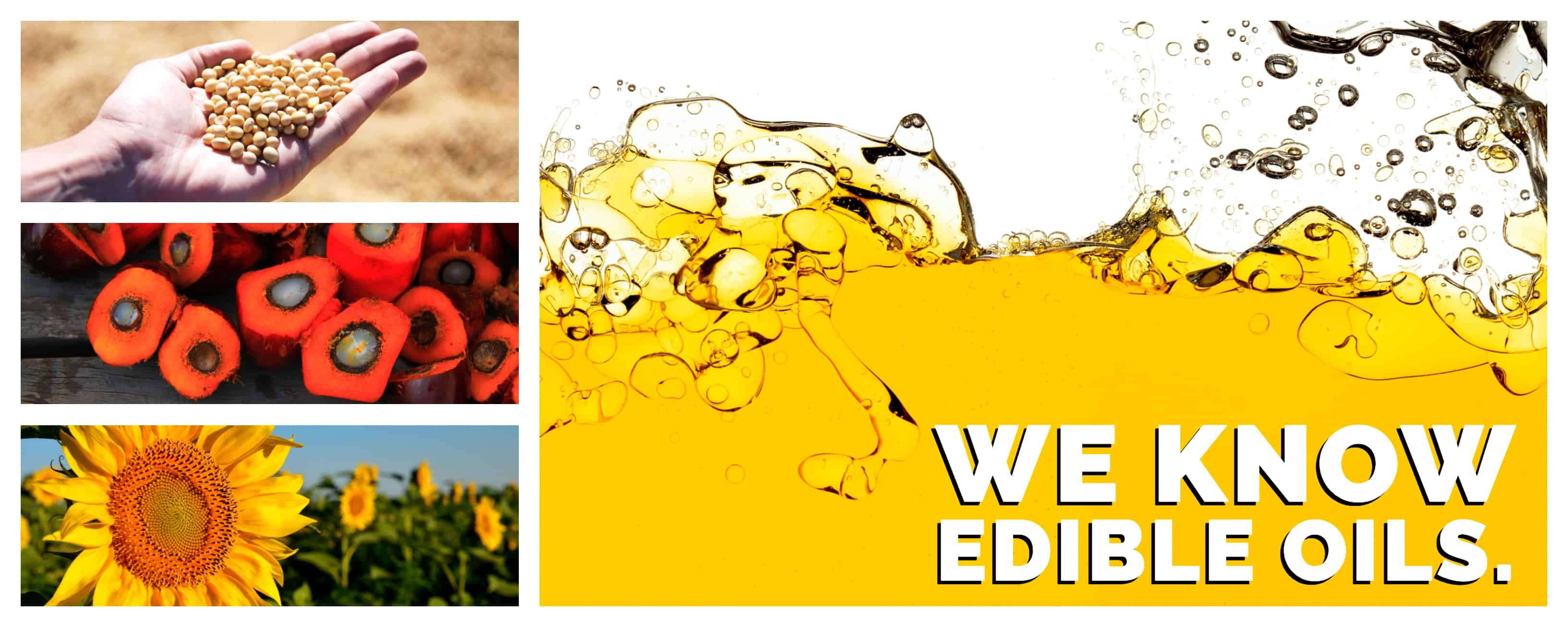 Edible Oil and Fats
