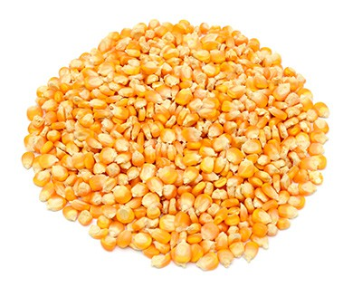 Corn grain products