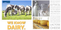 Interra International | Quality Dairy Products