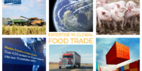 Interra International | Global Food Trade