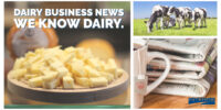 Interra International   Dairy Products And News