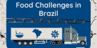 Interra International | Food Challenges In Brazil