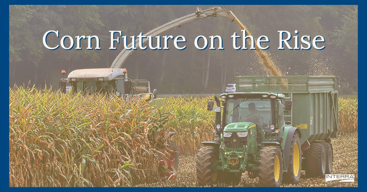 Interra International | Corn Industry News